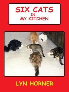 Cat Book Cover