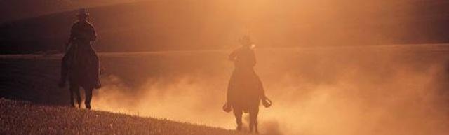Hazy orange rider cropped