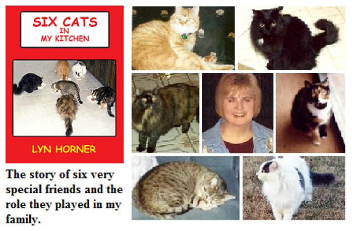 Six Cats cover & photos