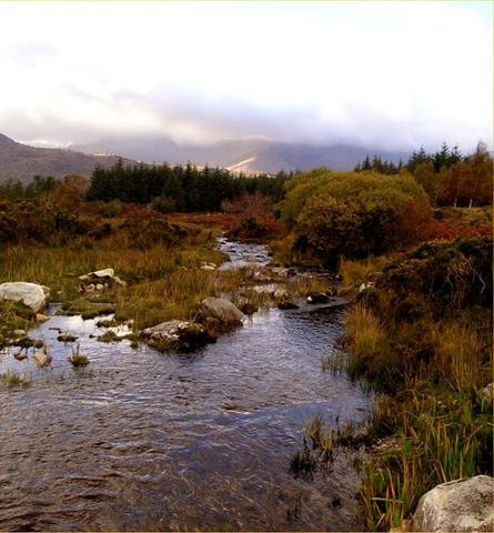 RingofKerryMountainstream