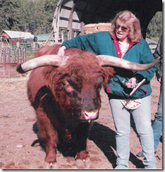 Judith with bull