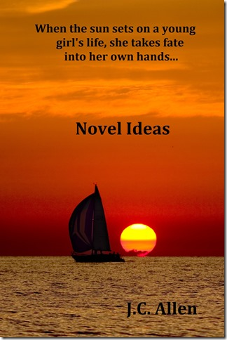 Novel Ideas book cover