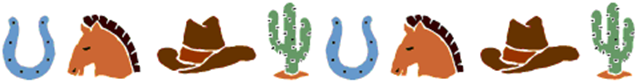 Horshoe, cactus, stetson & horse divider