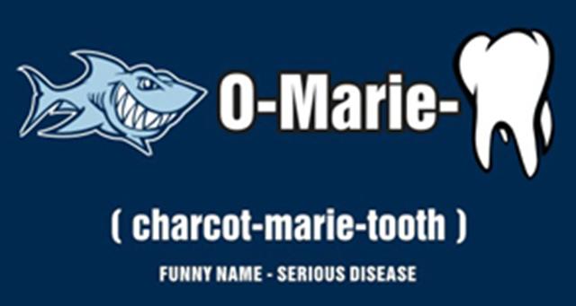 CMT shark logo