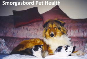 Smorgasbord Pet Health